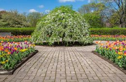 the gardens at cantigny park