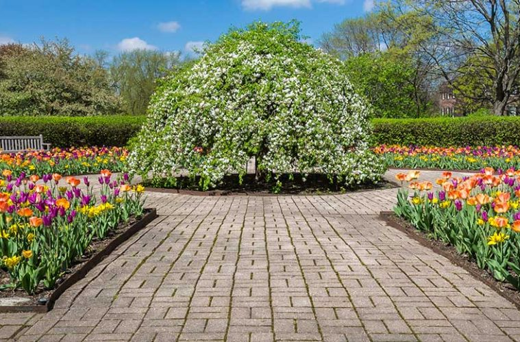 Memorial Day Weekend at Cantigny Park - Windy City Guide